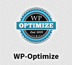 velocizzare-wordpress-wp-optmize